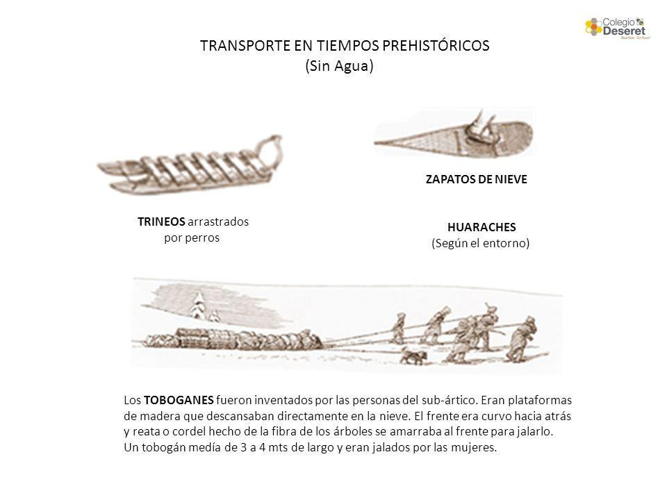 TRANSPORTE EN TIEMPOS PREHISTÓRICOS (Sin Agua) TRINEOS arrastrados por perros Los TOBOGANES fueron inventados por las personas del sub-ártico. Eran pl