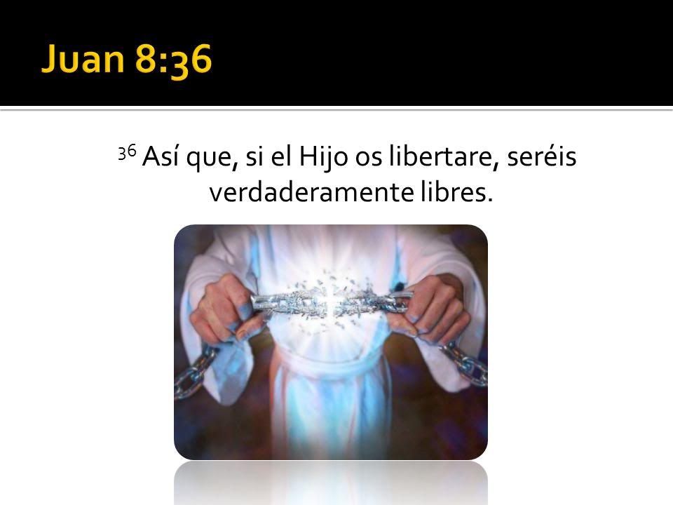 25 Gracias doy a Dios, por Jesucristo Señor nuestro.