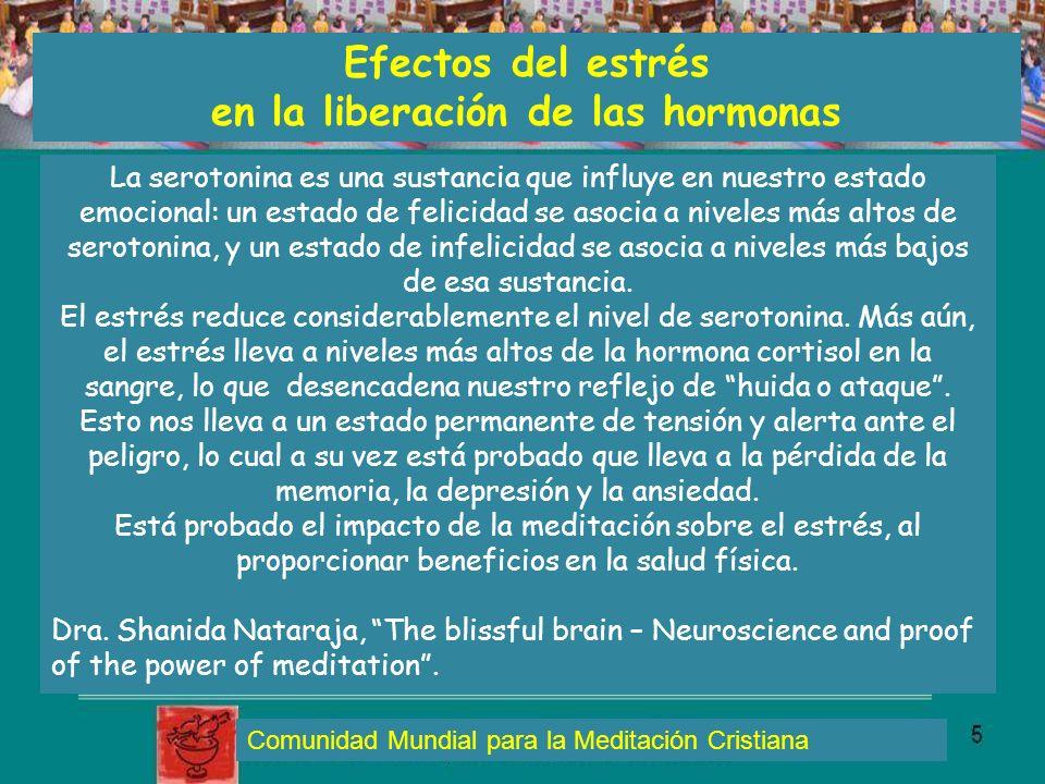Efectos del estrés en la liberación de las hormonas Comunidad Mundial para la Meditación Cristiana La serotonina es una sustancia que influye en nuest