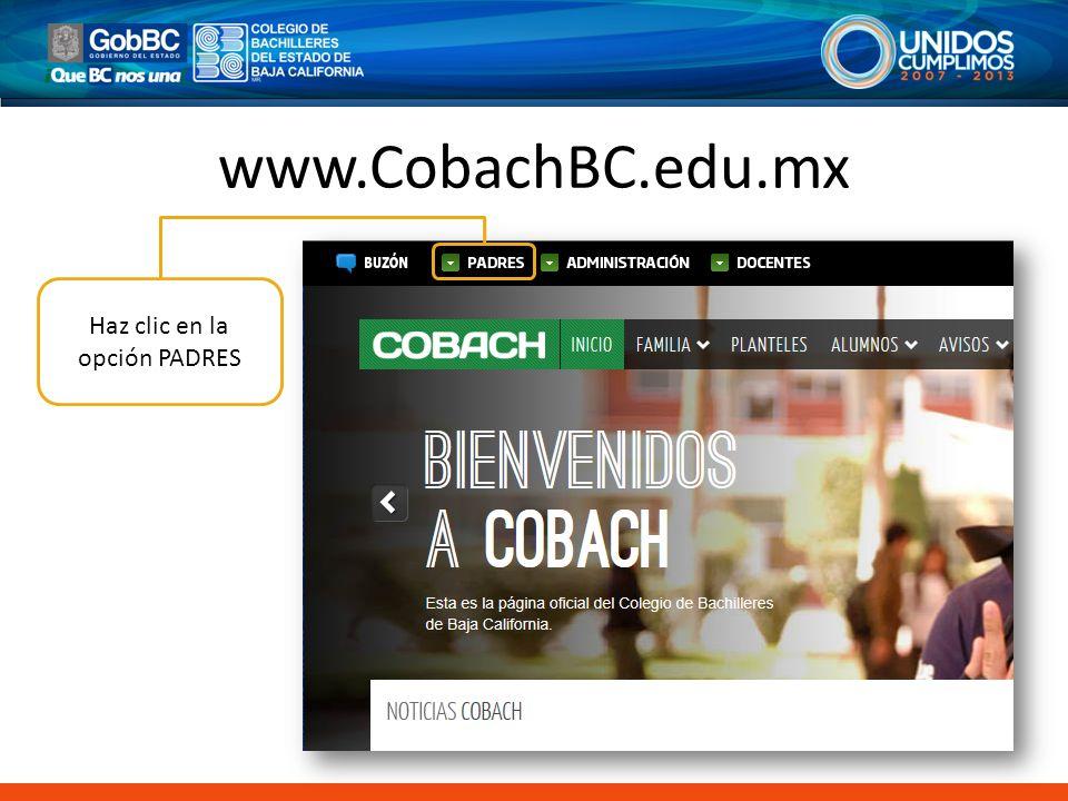 www.CobachBC.edu.mx Haz clic en la opción PADRES