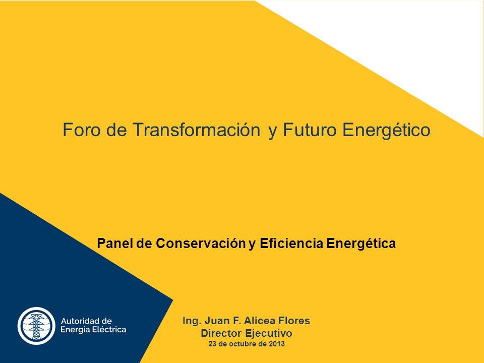 Ing. Juan F. Alicea Flores Director Ejecutivo 23 de octubre de 2013 Foro de Transformación y Futuro Energético Panel de Conservación y Eficiencia Ener