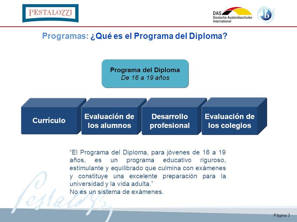 Página 3 Currículo Evaluación de los alumnos Desarrollo profesional Evaluación de los colegios El Programa del Diploma, para jóvenes de 16 a 19 años,