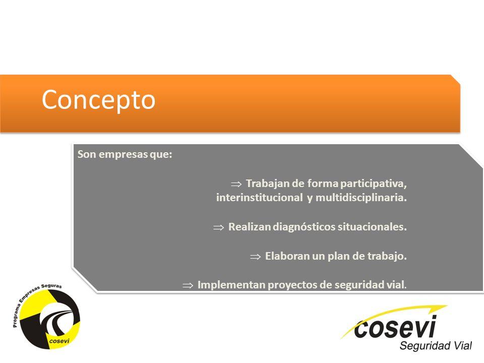 Concepto Son empresas que: Trabajan de forma participativa, interinstitucional y multidisciplinaria. Realizan diagnósticos situacionales. Elaboran un