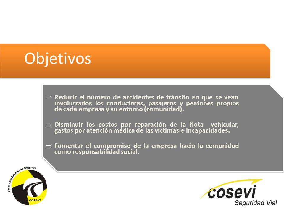 Aspectos a considerar para un reconocimiento Existencia de un responsable de la empresa en materia de seguridad vial Diagnóstico situacional por parte de la empresa Diseño del plan de trabajo, Proyecto (s) Desarrollo de Proyectos 2013-2014 …