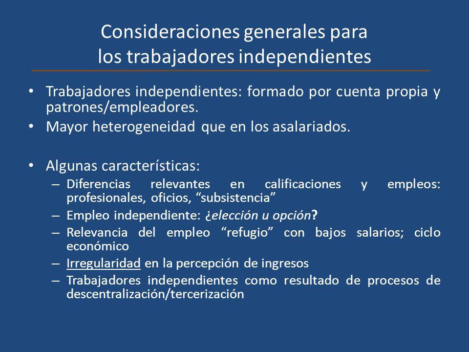 Consideraciones generales para los trabajadores independientes Trabajadores independientes: formado por cuenta propia y patrones/empleadores. Mayor he