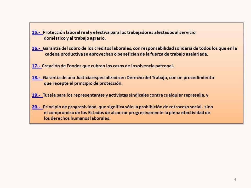 4 15.- 15.- 15.- 15.- Protección laboral real y efectiva para los trabajadores afectados al servicio doméstico y al trabajo agrario. 16.- 16.- 16.- Ga