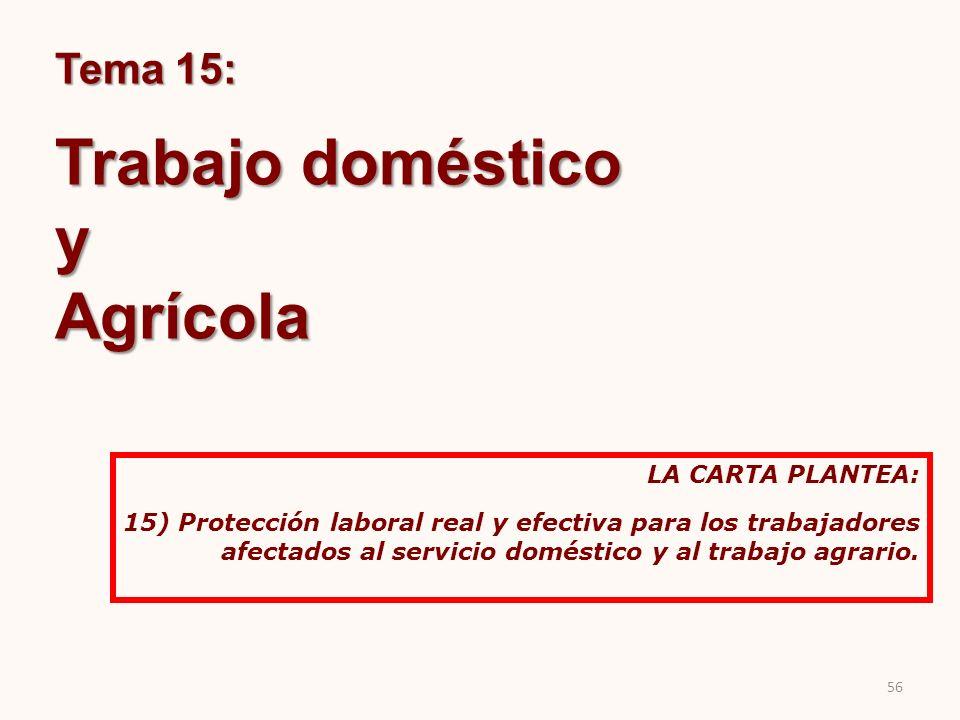 Tema 15: Trabajo doméstico yAgrícola LA CARTA PLANTEA: 15) Protección laboral real y efectiva para los trabajadores afectados al servicio doméstico y
