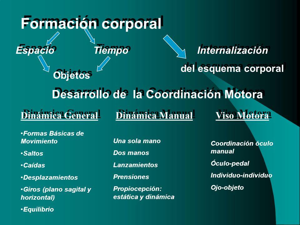 Formación corporal Espacio Tiempo Objetos Internalización del esquema corporal Internalización del esquema corporal Desarrollo de la Coordinación Moto