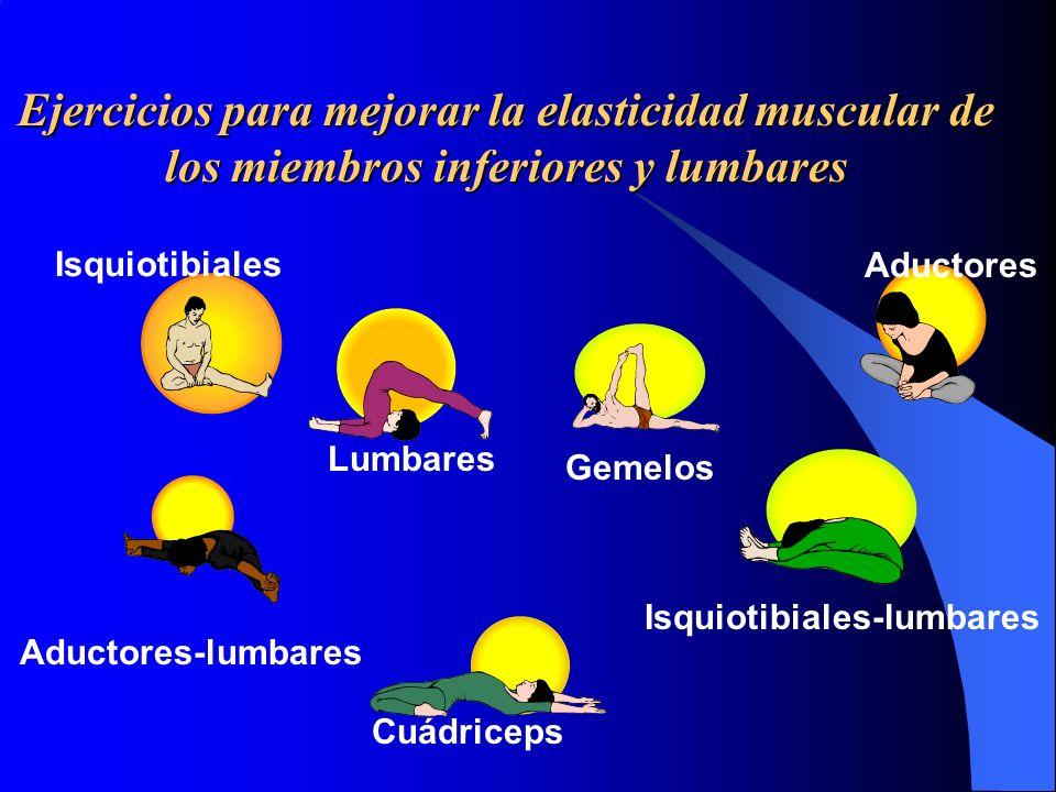 Ejercicios para mejorar la elasticidad muscular de los miembros inferiores y lumbares Isquiotibiales Gemelos Aductores Aductores-lumbares Lumbares Isq