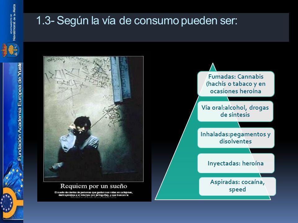 1.3- Según la vía de consumo pueden ser: Fumadas: Cannabis (hachís o tabaco y en ocasiones heroína Vía oral:alcohol, drogas de síntesis Inhaladas:pegamentos y disolventes Inyectadas: heroína Aspiradas: cocaína, speed