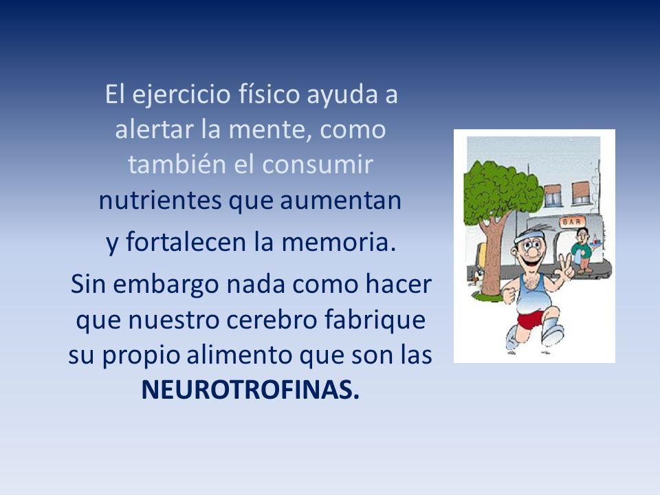 Las neurotrofinas son moléculas que producen y secretan las células nerviosas y actúan como alimento para mantenerse saludables.