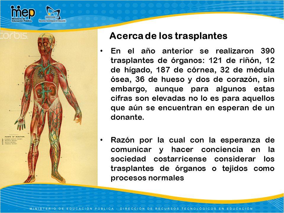 Acerca de los trasplantes En el año anterior se realizaron 390 trasplantes de órganos: 121 de riñón, 12 de hígado, 187 de córnea, 32 de médula ósea, 3