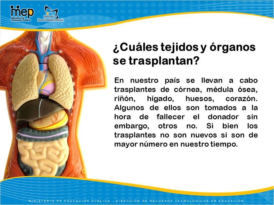 ¿Cuáles tejidos y órganos se trasplantan? En nuestro país se llevan a cabo trasplantes de córnea, médula ósea, riñón, hígado, huesos, corazón. Algunos