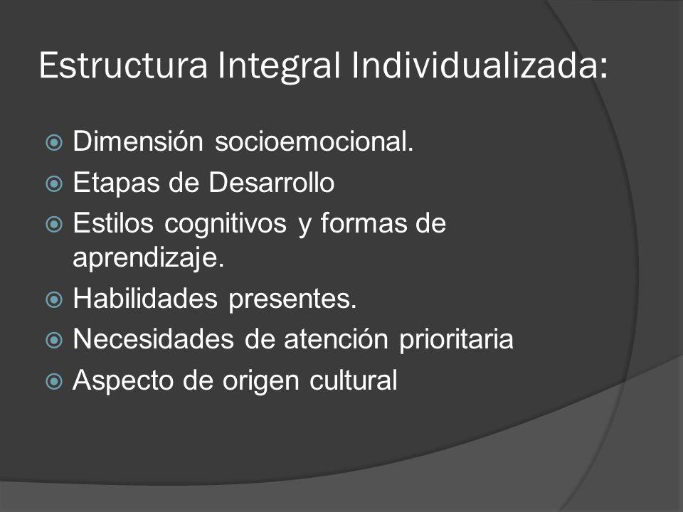 Estructura Integral Individualizada: Dimensión socioemocional. Etapas de Desarrollo Estilos cognitivos y formas de aprendizaje. Habilidades presentes.
