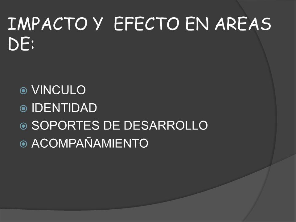 IMPACTO Y EFECTO EN AREAS DE: VINCULO IDENTIDAD SOPORTES DE DESARROLLO ACOMPAÑAMIENTO