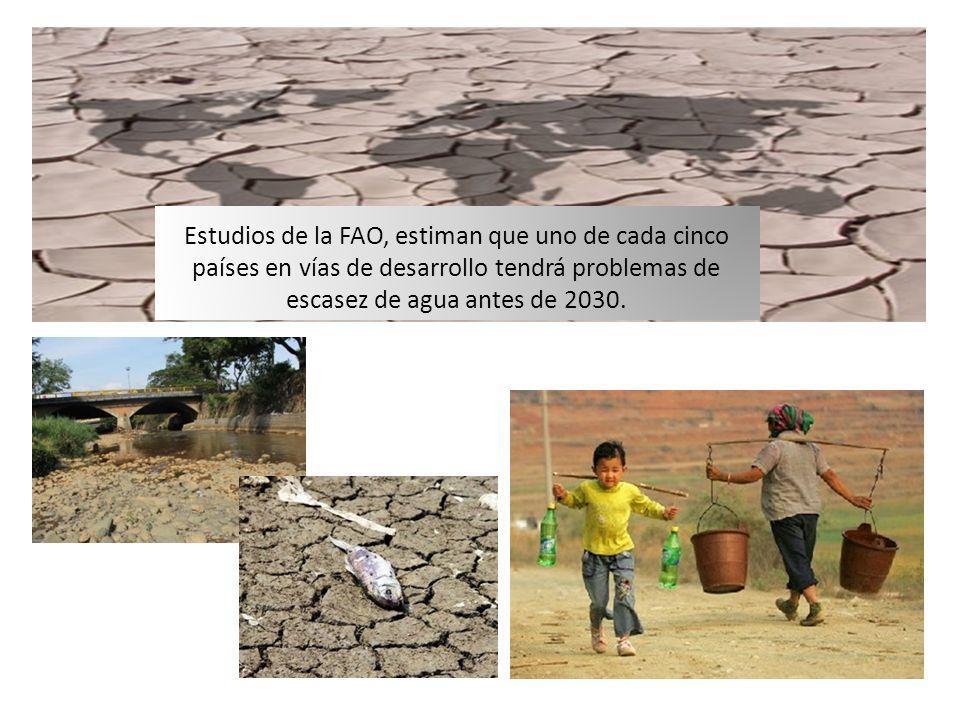 Estudios de la FAO, estiman que uno de cada cinco países en vías de desarrollo tendrá problemas de escasez de agua antes de 2030.