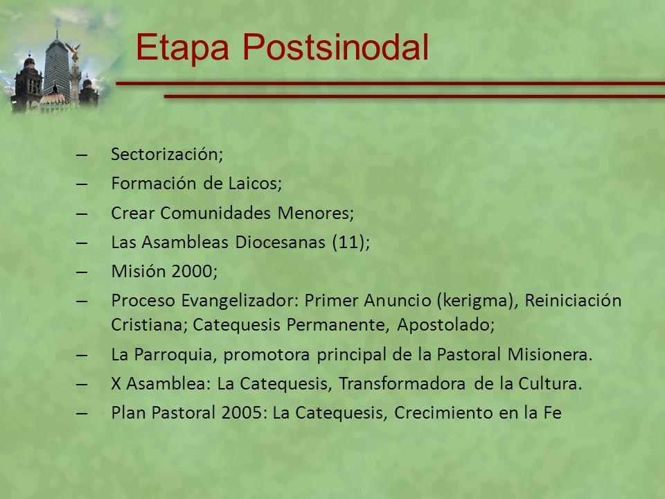 A través de las Orientaciones Pastorales 2008, impulsar la formación de los catequistas como discípulos-misioneros.