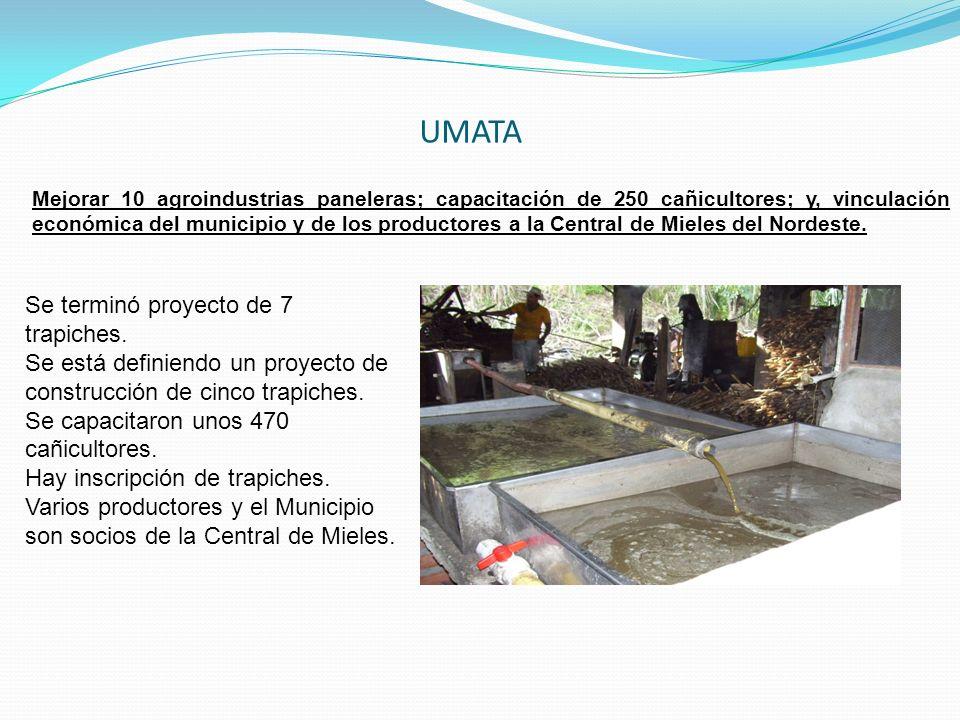 Mejorar 10 agroindustrias paneleras; capacitación de 250 cañicultores; y, vinculación económica del municipio y de los productores a la Central de Mie