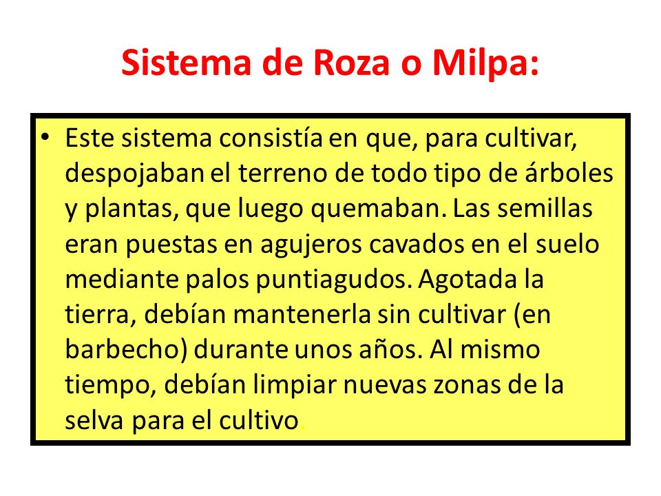 Sistema de Roza o Milpa: Este sistema consistía en que, para cultivar, despojaban el terreno de todo tipo de árboles y plantas, que luego quemaban. La
