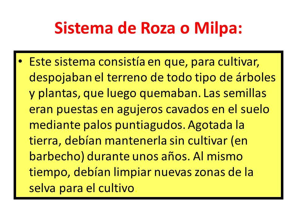 Sistema de roza o milpa