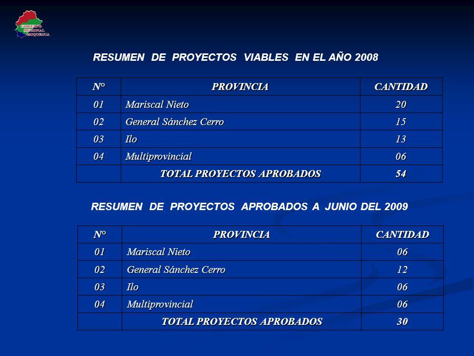RESUMEN DE PROYECTOS VIABLES EN EL AÑO 2008 N°PROVINCIACANTIDAD 01 Mariscal Nieto 20 02 General Sánchez Cerro 15 03Ilo13 04Multiprovincial06 TOTAL PRO