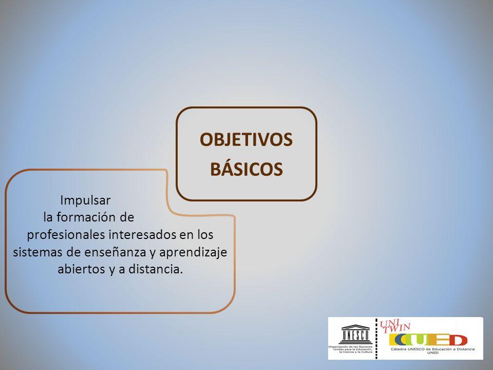 OBJETIVOS BÁSICOS Impulsar la formación de profesionales interesados en los sistemas de enseñanza y aprendizaje abiertos y a distancia.