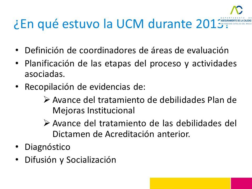 ¿En qué estuvo la UCM durante 2013? Definición de coordinadores de áreas de evaluación Planificación de las etapas del proceso y actividades asociadas