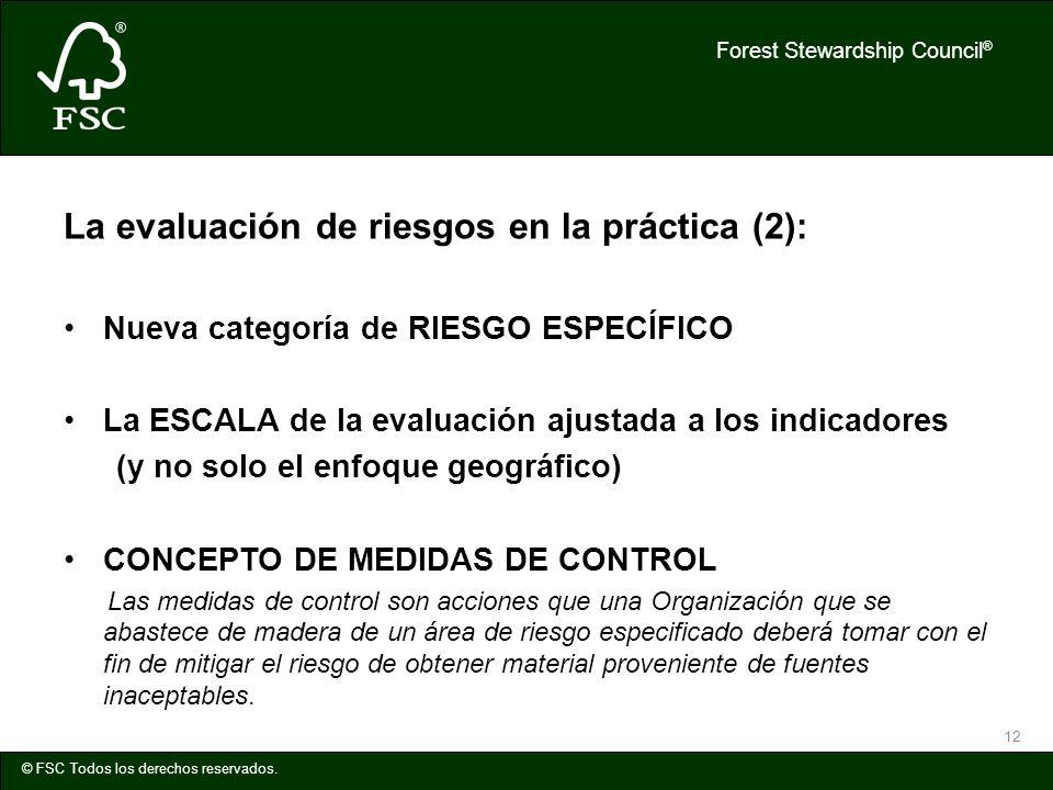 Forest Stewardship Council ® © FSC Todos los derechos reservados. 12 La evaluación de riesgos en la práctica (2): Nueva categoría de RIESGO ESPECÍFICO