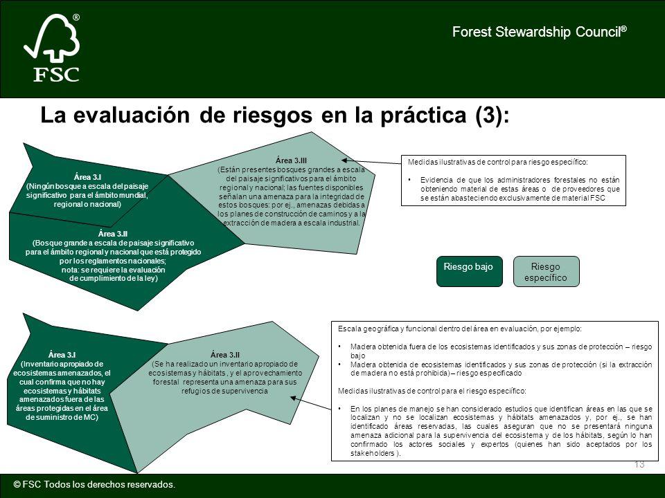 Forest Stewardship Council ® © FSC Todos los derechos reservados. 13 La evaluación de riesgos en la práctica (3): Área 3.III (Están presentes bosques