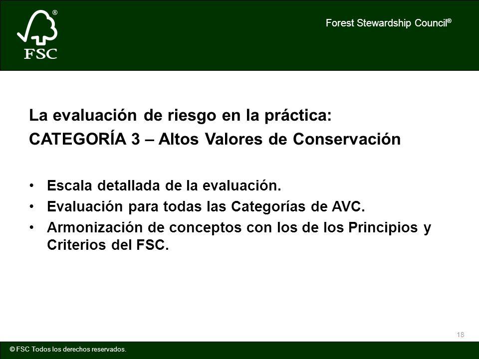 Forest Stewardship Council ® © FSC Todos los derechos reservados. 18 La evaluación de riesgo en la práctica: CATEGORÍA 3 – Altos Valores de Conservaci