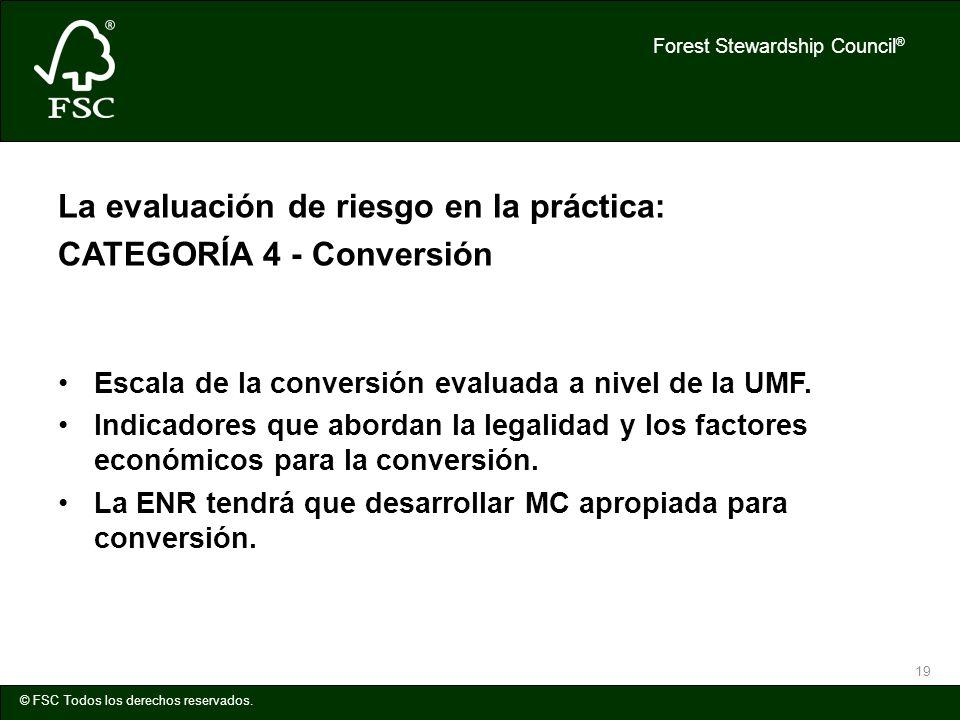Forest Stewardship Council ® © FSC Todos los derechos reservados. 19 La evaluación de riesgo en la práctica: CATEGORÍA 4 - Conversión Escala de la con