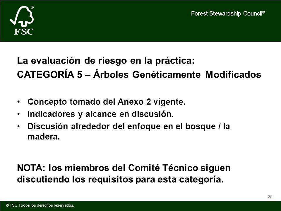 Forest Stewardship Council ® © FSC Todos los derechos reservados. 20 La evaluación de riesgo en la práctica: CATEGORÍA 5 – Árboles Genéticamente Modif
