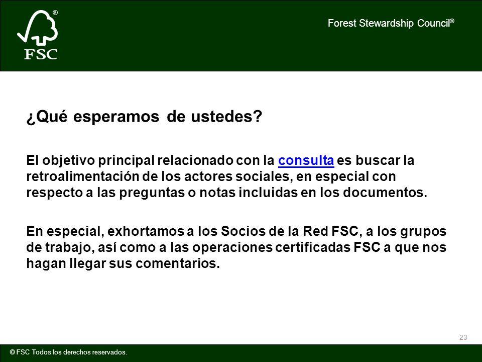 Forest Stewardship Council ® © FSC Todos los derechos reservados. 23 ¿Qué esperamos de ustedes? El objetivo principal relacionado con la consulta es b