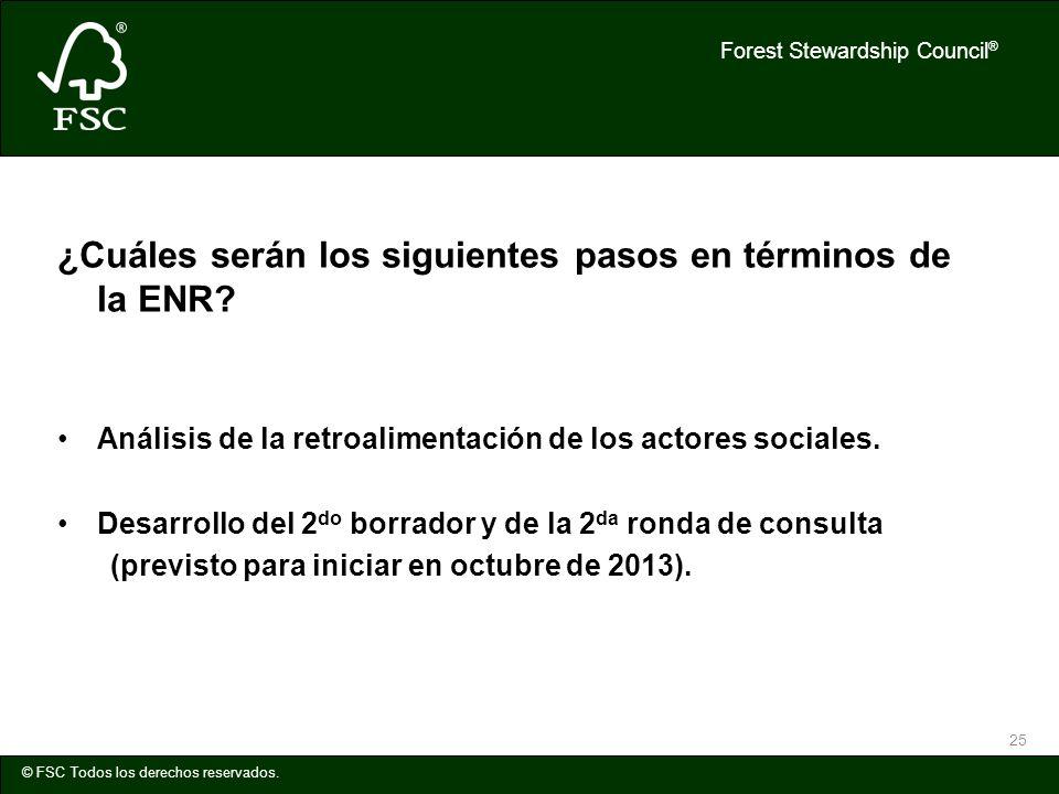Forest Stewardship Council ® © FSC Todos los derechos reservados. 25 ¿Cuáles serán los siguientes pasos en términos de la ENR? Análisis de la retroali