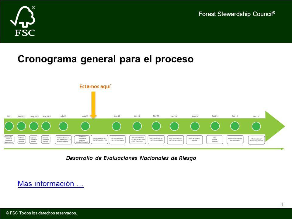 Forest Stewardship Council ® © FSC Todos los derechos reservados. 4 Cronograma general para el proceso Más información … Desarrollo de Evaluaciones Na