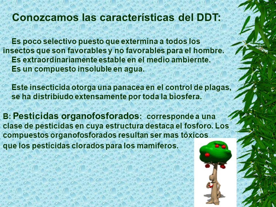 Conozcamos las características del DDT: Es poco selectivo puesto que extermina a todos los insectos que son favorables y no favorables para el hombre.