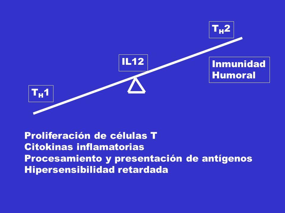 TH1TH1 TH2TH2 IL12 Inmunidad Humoral Proliferación de células T Citokinas inflamatorias Procesamiento y presentación de antígenos Hipersensibilidad retardada