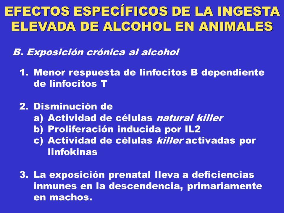 EFECTOS ESPECÍFICOS DE LA INGESTA ELEVADA DE ALCOHOL EN ANIMALES B.