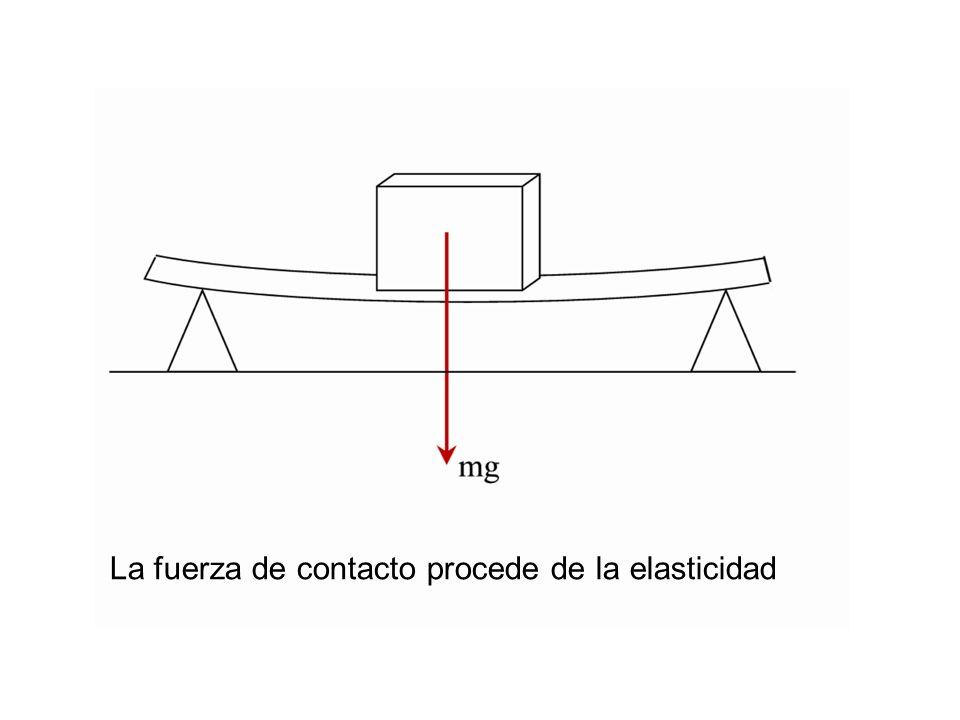 La fuerza de contacto procede de la elasticidad