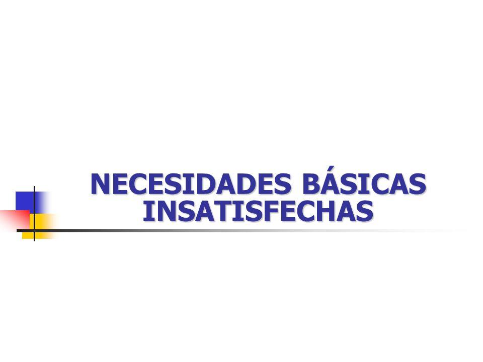 NECESIDADES BÁSICAS INSATISFECHAS