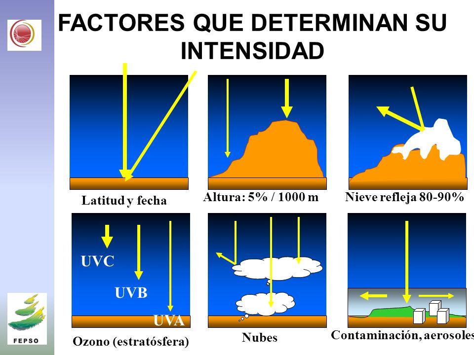 FACTORES QUE DETERMINAN SU INTENSIDAD UVC UVB UVA Latitud y fecha Ozono (estratósfera) Altura: 5% / 1000 m Nubes Nieve refleja 80-90% Contaminación, aerosoles
