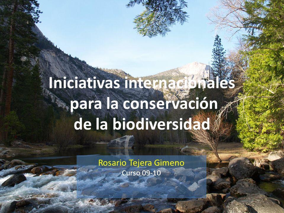 Iniciativas internacionales para la conservación de la biodiversidad Rosario Tejera Gimeno Curso 09-10