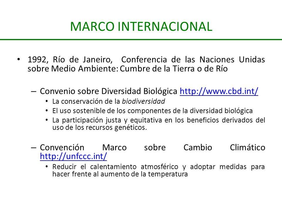 MARCO INTERNACIONAL 1992, Río de Janeiro, Conferencia de las Naciones Unidas sobre Medio Ambiente: Cumbre de la Tierra o de Río – Convenio sobre Diver