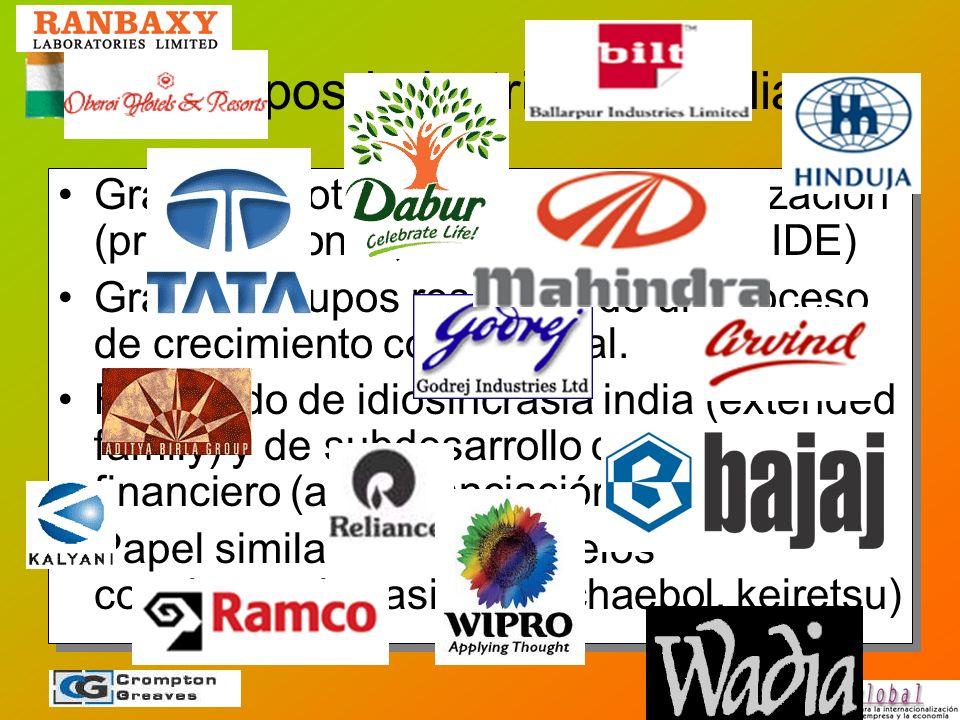 Los grupos industriales familiares Grandes protagonistas de la liberalización (privatizaciones, desregulaciones e IDE) Grandes grupos resultado de un