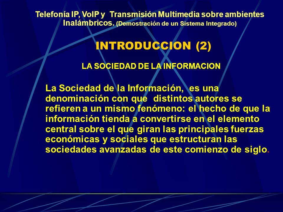 INTRODUCCION (2) La Sociedad de la Información, es una denominación con que distintos autores se refieren a un mismo fenómeno: el hecho de que la información tienda a convertirse en el elemento central sobre el que giran las principales fuerzas económicas y sociales que estructuran las sociedades avanzadas de este comienzo de siglo.
