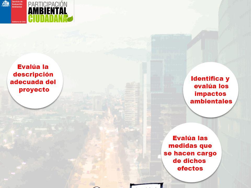 Evalúa las medidas que se hacen cargo de dichos efectos Identifica y evalúa los impactos ambientales ¿QUÉ ES EL SISTEMA DE EVALUACIÓN DE IMPACTO AMBIENTAL.