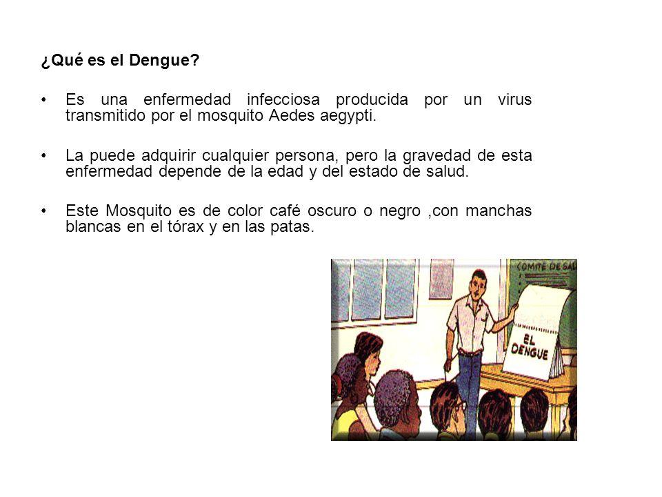 ¿Qué es el Dengue? Es una enfermedad infecciosa producida por un virus transmitido por el mosquito Aedes aegypti. La puede adquirir cualquier persona,