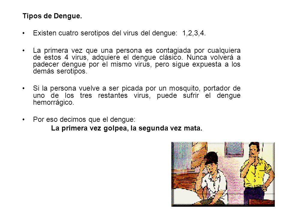 Tipos de Dengue. Existen cuatro serotipos del virus del dengue: 1,2,3,4. La primera vez que una persona es contagiada por cualquiera de estos 4 virus,