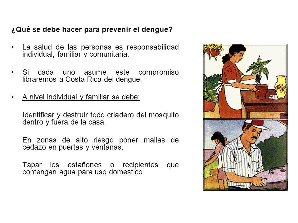 ¿Qué se debe hacer para prevenir el dengue? La salud de las personas es responsabilidad individual, familiar y comunitaria. Si cada uno asume este com