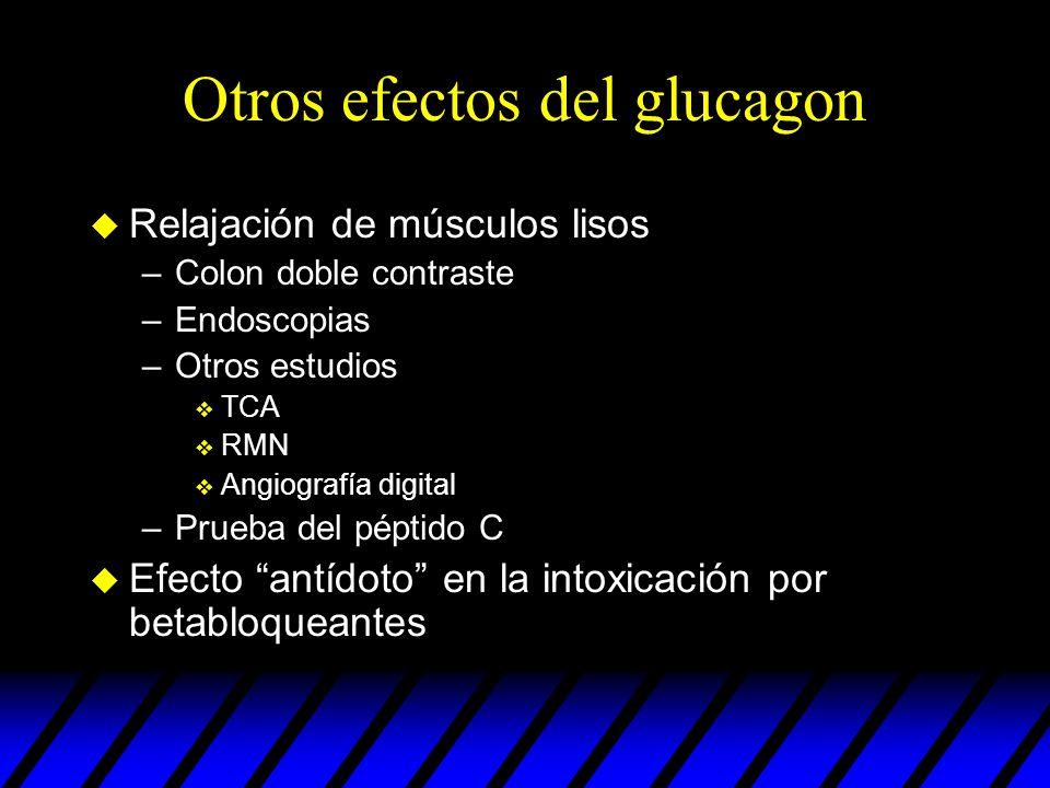 Otros efectos del glucagon u Relajación de músculos lisos –Colon doble contraste –Endoscopias –Otros estudios v TCA v RMN v Angiografía digital –Prueb